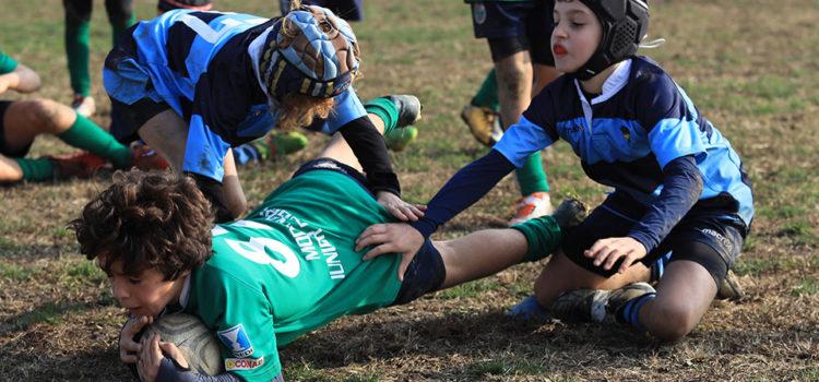 Modena Rugby minirugby